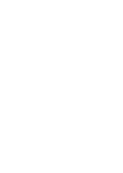 nzieh website